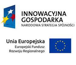 Innowacyjna Gospodarka Narodowa Strategia Spójności